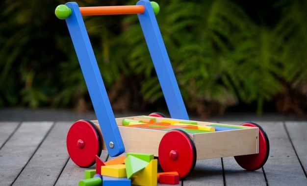 Top 5 Factors ToRemember While Buying The Best Pull Or Push Along ToysFor Your Kid